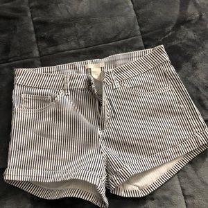 Pin stripe high waist shorts